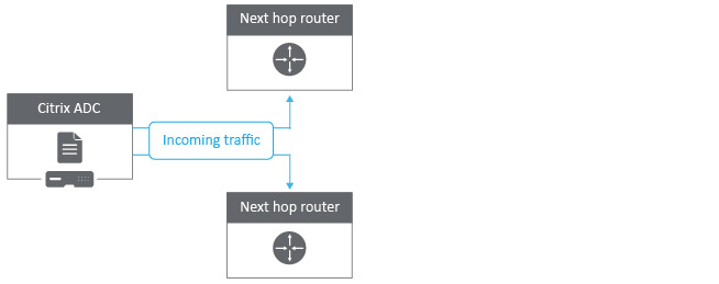 NetScaler Policy Based Routing