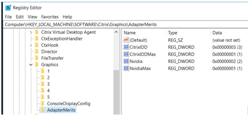 Display adapter priority and monitor creation in Citrix sessions
